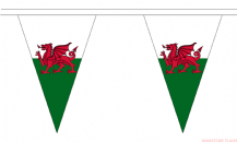 WALES TRIANGULAR BUNTING - 20 METRES 54 FLAGS